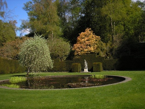 Pool garden