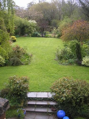 The side garden.