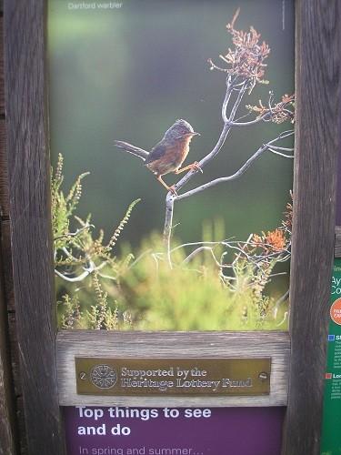 RSPB reserve