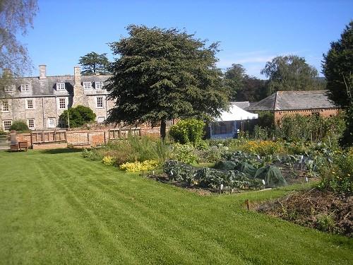 Walled garden @ Cadhay