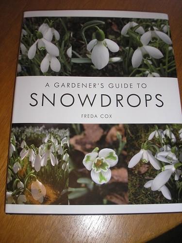 Snowdrop book