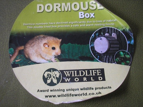 A little Dormouse, that's who! I saw this at our local garden centre and couldn't resist it.