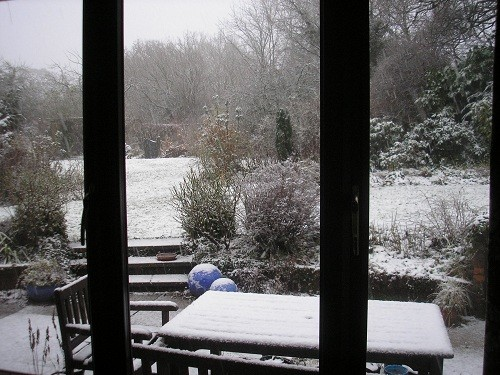 From the side window of the dining room.