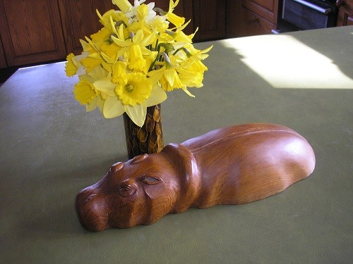 Daffodils and hippo