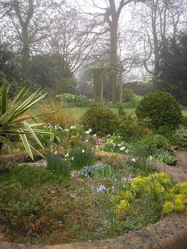 Long view back garden