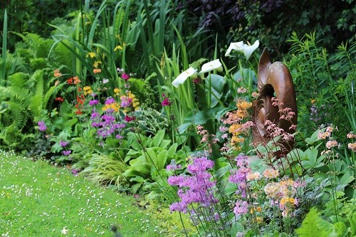 My favourite spot in the garden at the moment, my rainbow bog!