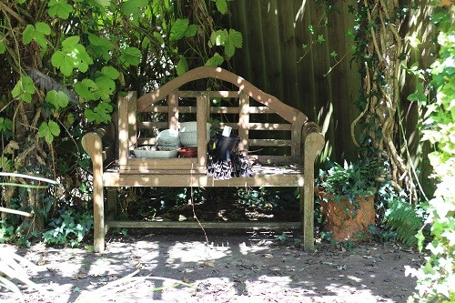I always used to love sitting here in the dappled shade for my morning coffee, not lately though, it was such a mess!