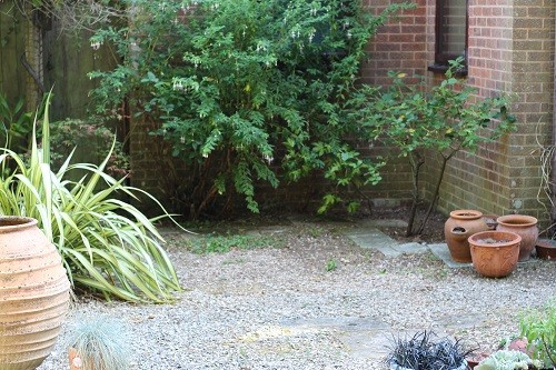 The new tidy shady area, can't wait to do some more interesting planting.
