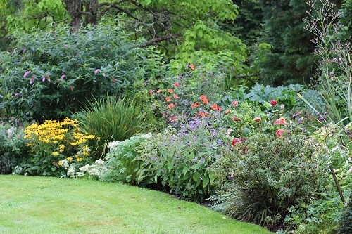 The borders near the house are packed full of beautiful colour.