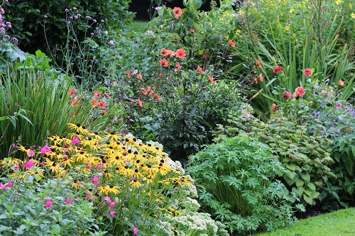 So many beautiful plants, I can see that I'm going to be busy!