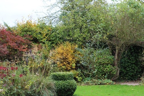 "I'll finish with a couple of long views of the garden. This is of the top of the dead oak border with the ""Chinese Ginger Jar"" at its tip"