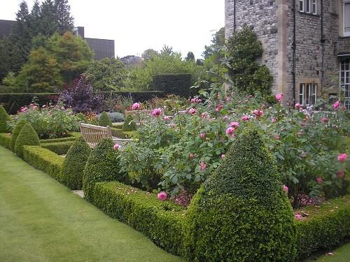 Rose garden.Kilver Court Garden