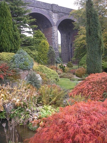More Acers.