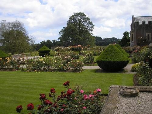 Yew topiary