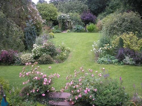 Side garden roses