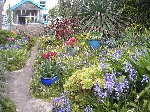 Garden on St. Agnes
