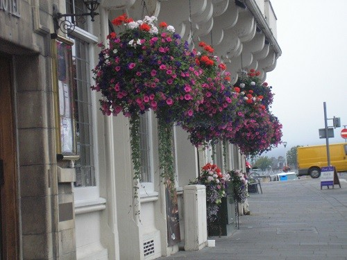 Hanging baskets in Inverness