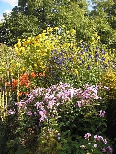 Herbaceous borders.