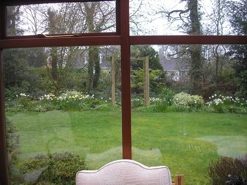 Back garden form conservatory