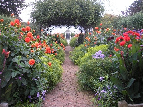 Central path to greenhouse