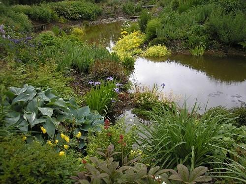 Pond at Wildside