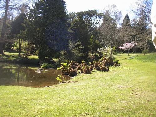 Lakeside at Haldon Grange